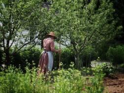 Victorian Garden Album 32