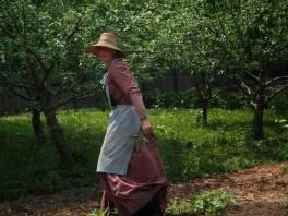 Victorian Garden Album 5