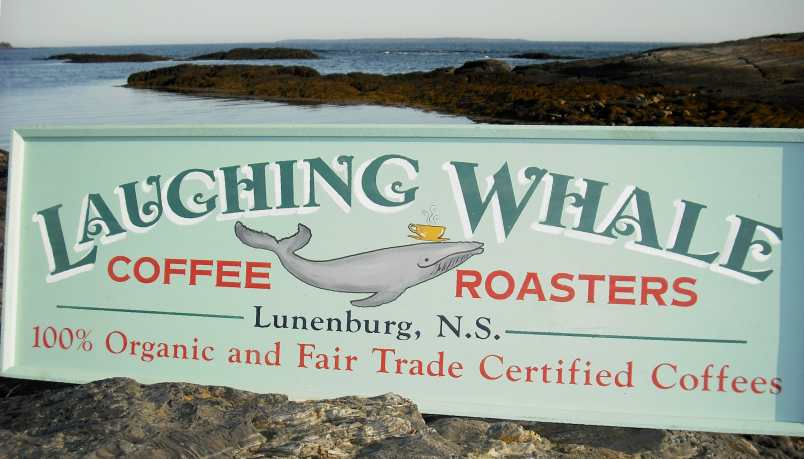 Laughing Whale Coffee Roasters Sign On Rocks