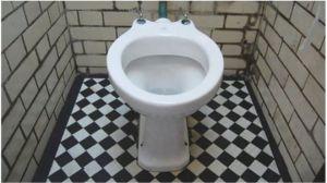 _73908518_toilet