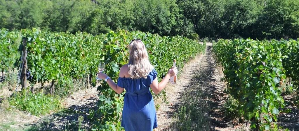Wijnproeverijen en wijncursussen Rotterdam