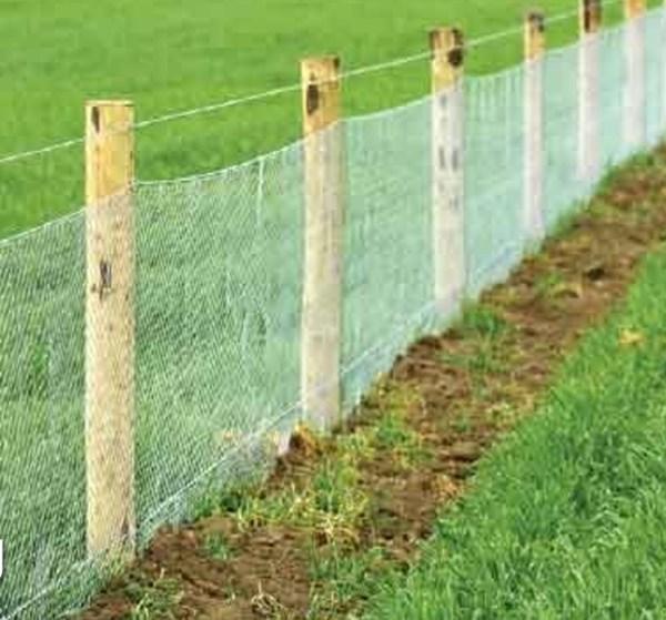 Rabbit netting fence