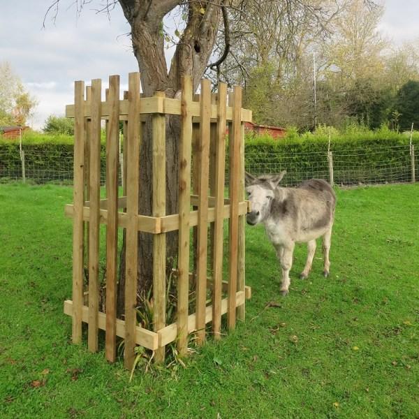 Tree Guard and donkey