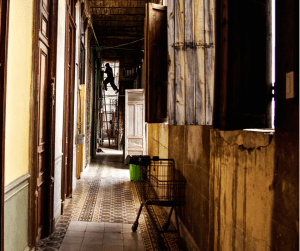 Grand but decrepit buildings are desperately in need of renovation.