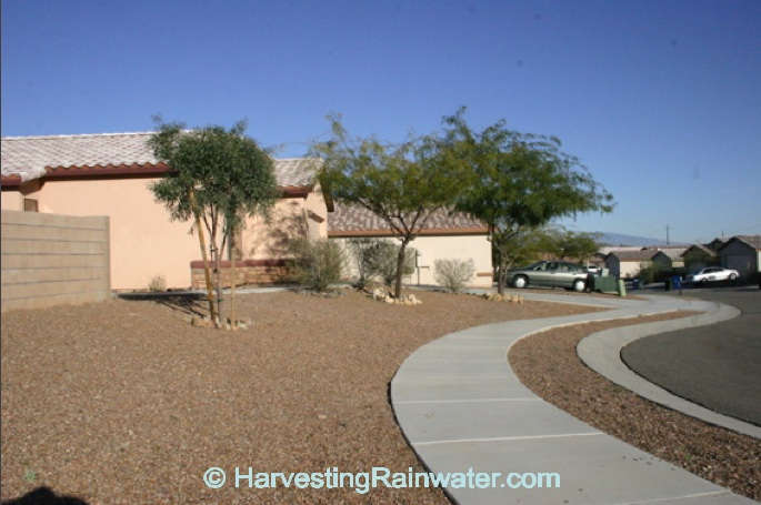 Rainwater harvesting for drylands and beyond by brad for Landscaping rocks yuma az