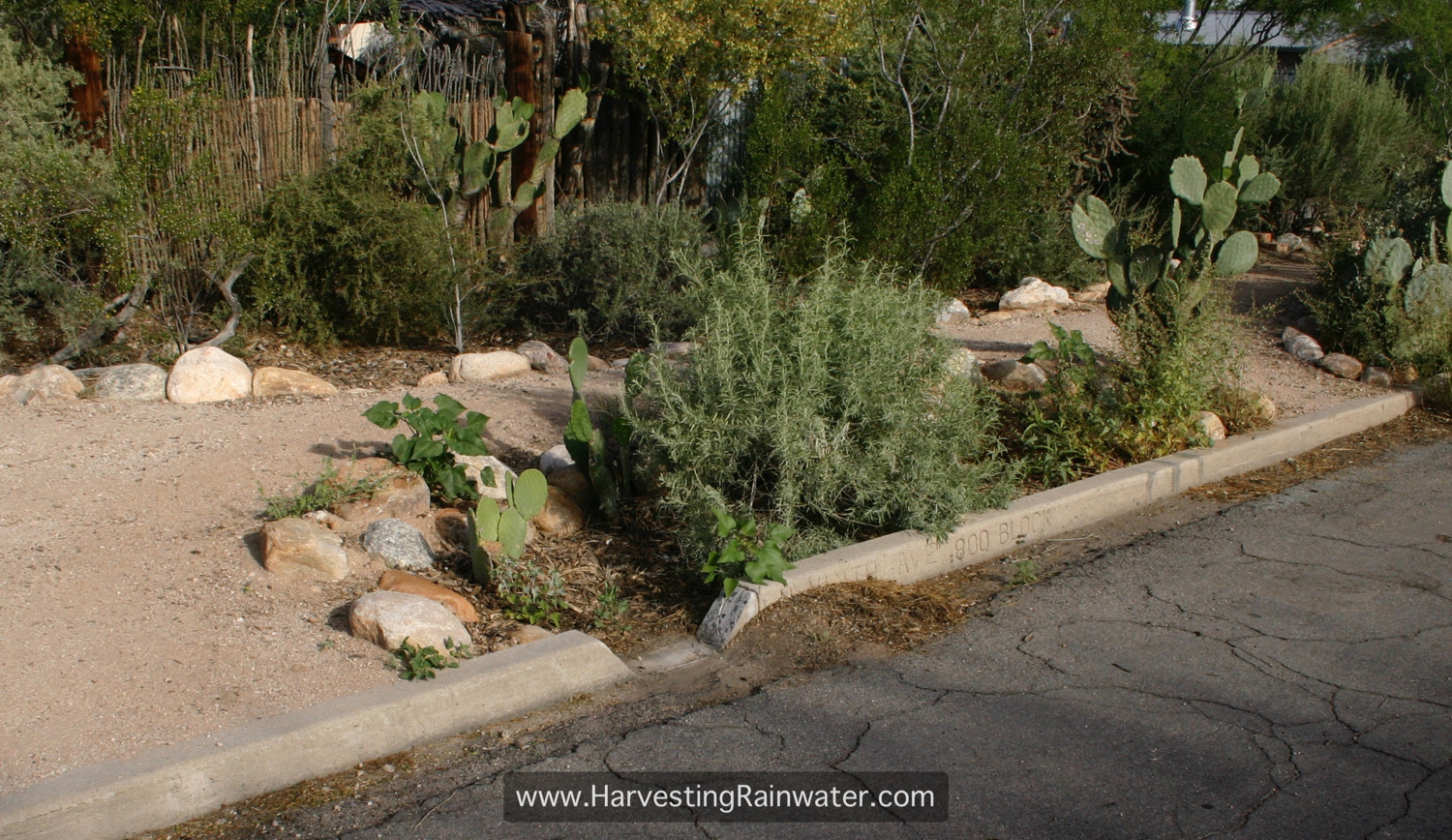 Rainwater Harvesting for Drylands and Beyond by Brad Lancaster » Do ...