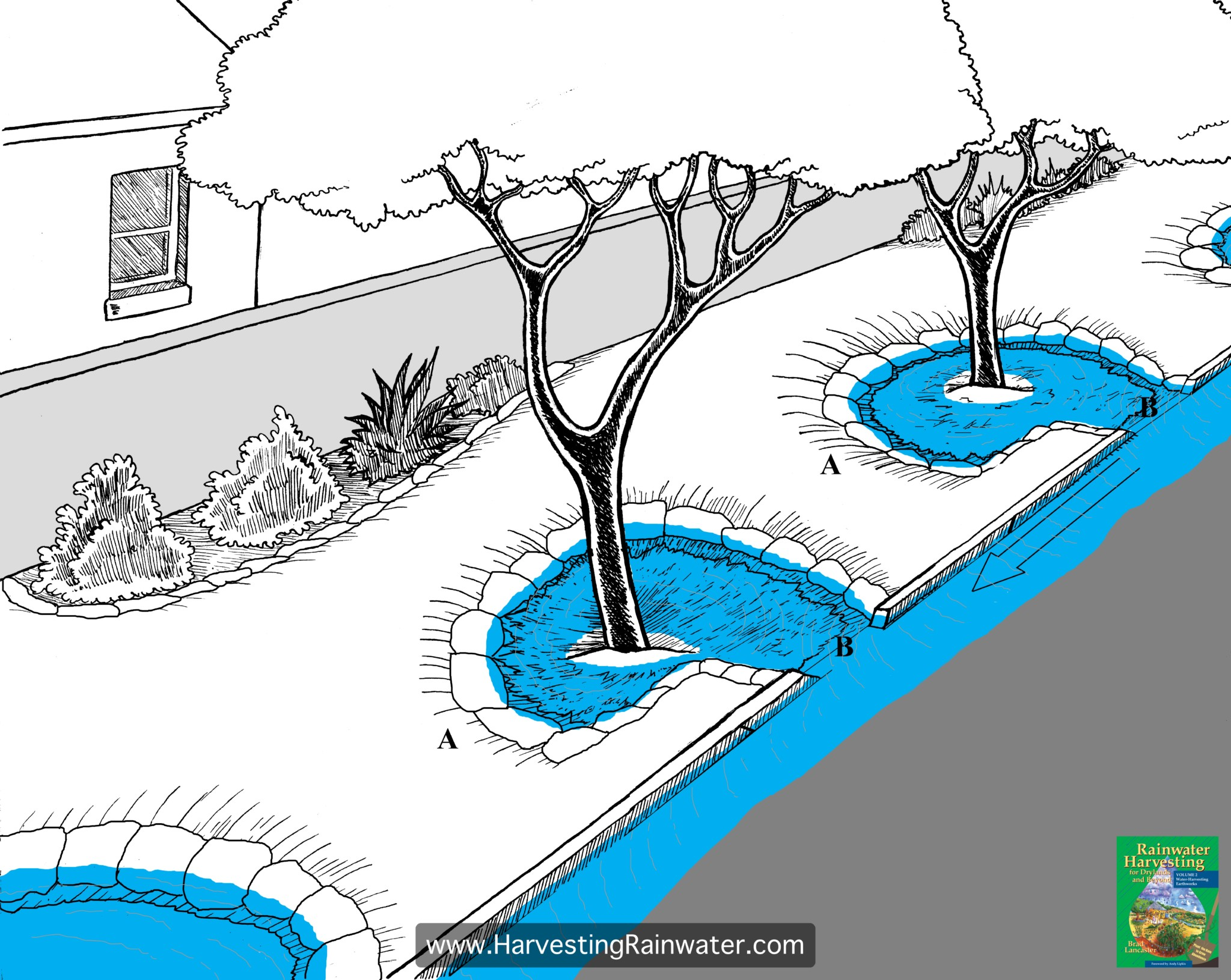 Figure 1. Eddy or backwater basins. The upper edge of the farthest-downstream section of the basin (A) must be higher (ideally at least 4 inches [10 cm] higher) than the basin's curb-cut, or curb-core, inlet (B) to ensure pooling water calmly backs up to the inlet. Arrow denotes water flow.
