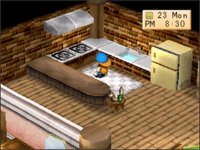 Cooking Harvest Moon Back To Nature Guide