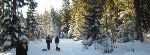 Einen Tag Winterurlaub im Harz
