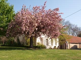 Bild: Am Alten Friedhof oder Campo Santo in der Caspar-Güttel-Straße in der Lutherstadt Eisleben.