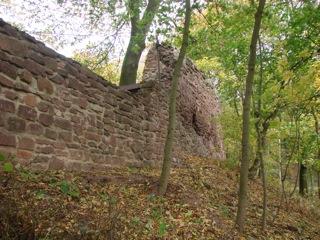 Bild: Die Wall- und Befestigungsmauern auf der flachen Seite des Bergspornes der Schweinsburg zu Bornstedt.