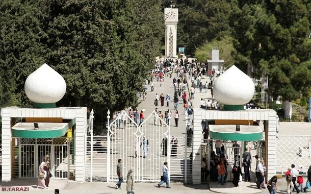 محافظة: دراسة تخصصين لا يخالف الأعراف الأكاديمية