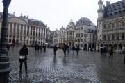 بروكسل تمنع دخول المركبات الملوّثة للبيئة