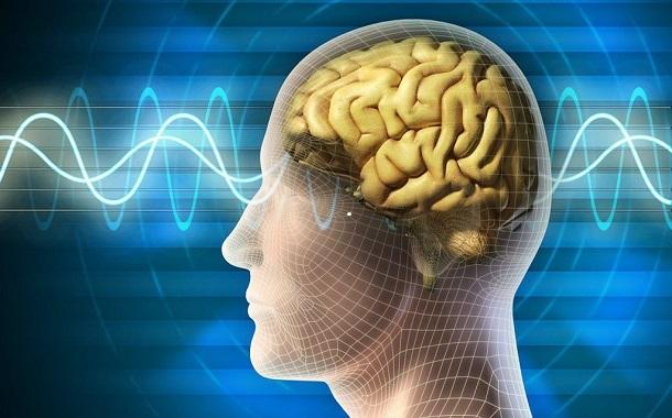 هل يوجد ارتباط بين الذكاء وحجم الرأس؟