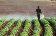 صناعة الزراعة والتكامل العربي بعد ازمة كورونا..