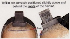 These tefillin are correctly positioned slightly above and behind the roots of the hairline.