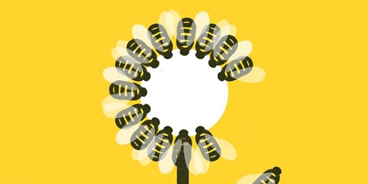 Ya no hay abejas