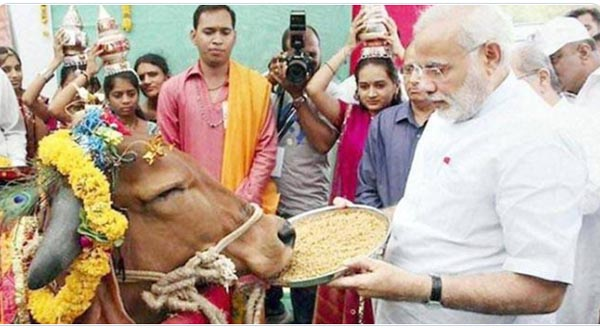 PM Modi to launch nationwide animal healthcare campaign from Mathura – vrindavan