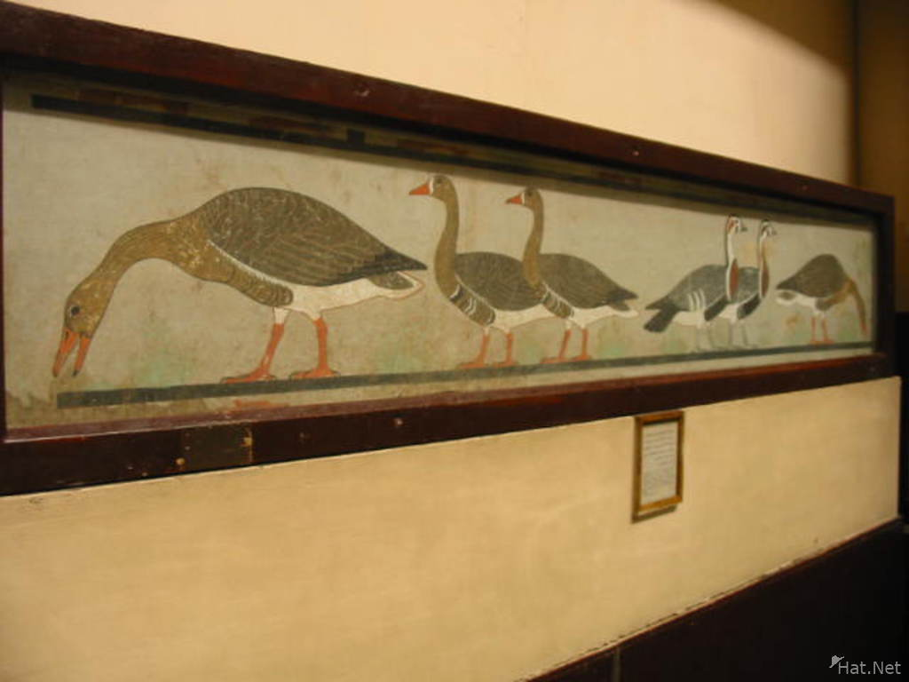 The geese of Meidum, ancient Egyptian painting of white-fronted, red-breasted, and bean geese