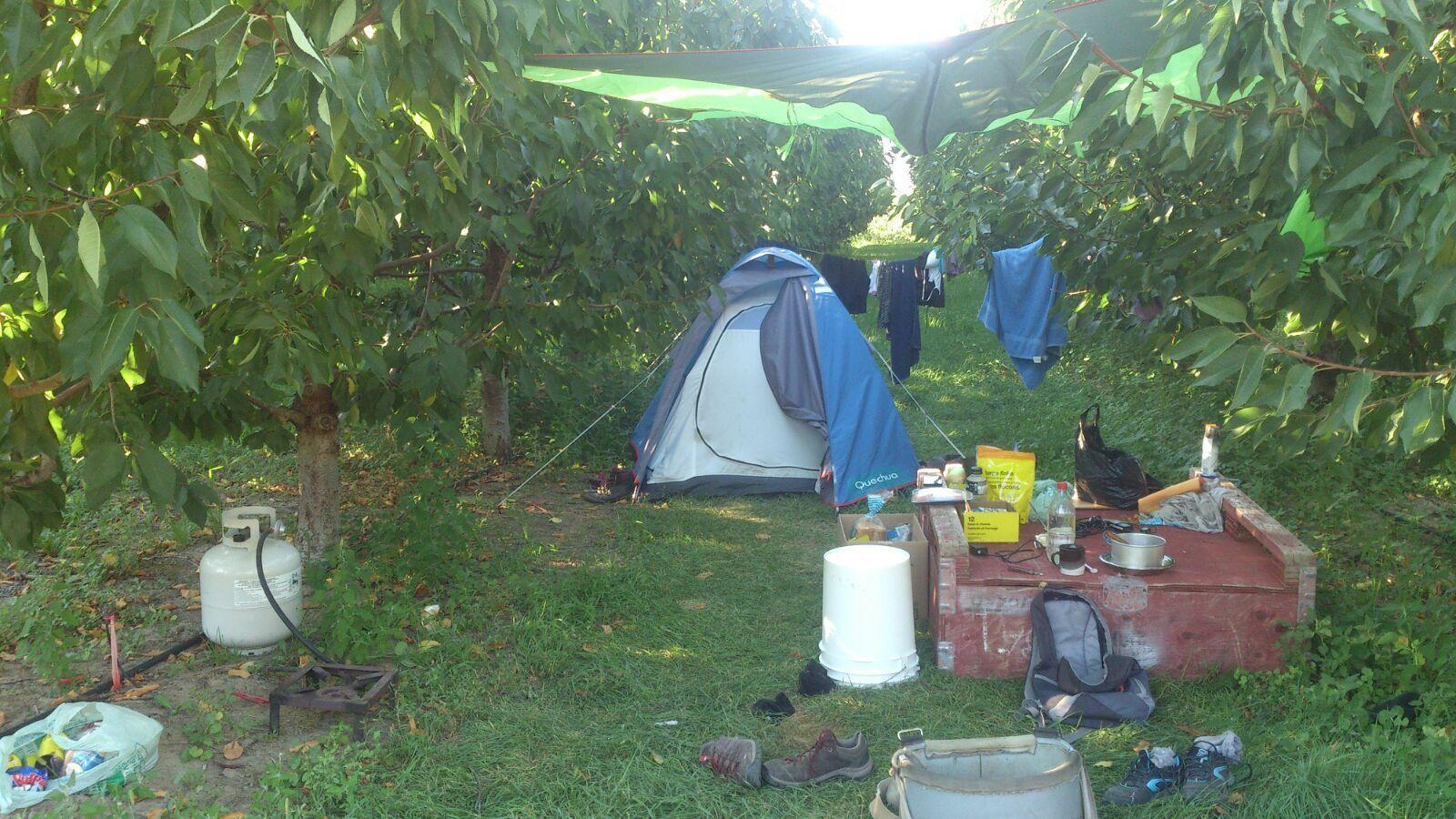 picker canada, picker, cerezas, cherry picker, diario de un picker, recoger cerezas, camping canada, granja canada