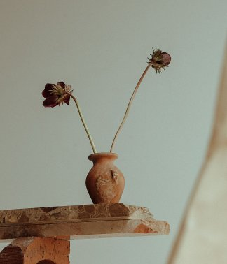 Mixed Small Stems | That Flower Shop | Seasonal flowers