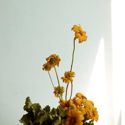 Keia's Choice   That Flower Shop   Seasonal flowers, bouquets and arrangements