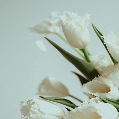 Abundance of Seasonal Flowers   That Flower Shop