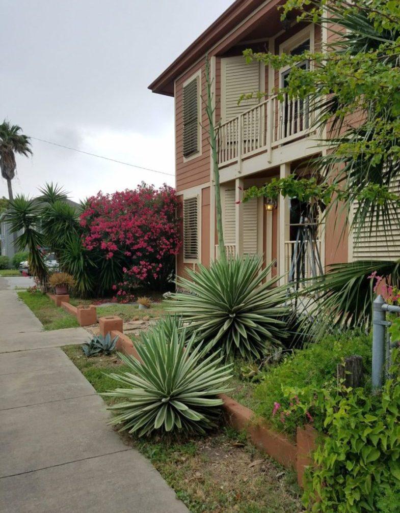 Hattie's Place Too- Galveston Island Texas