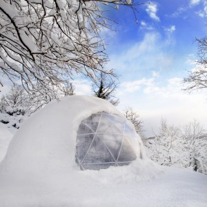Winter Garden Igloo