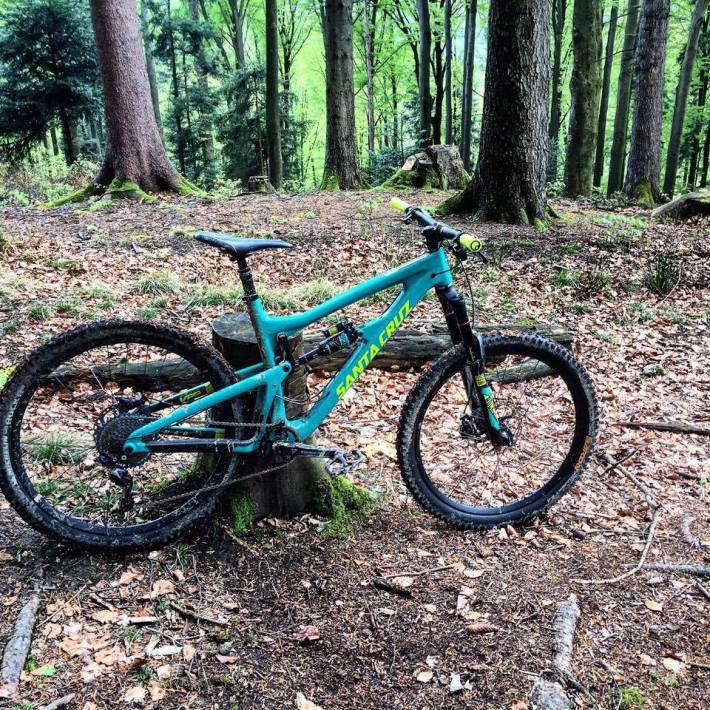 Nomad CC Wald