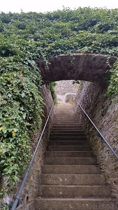 Haunted experiences stairs to the unknown