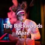 The Backwoods Maze