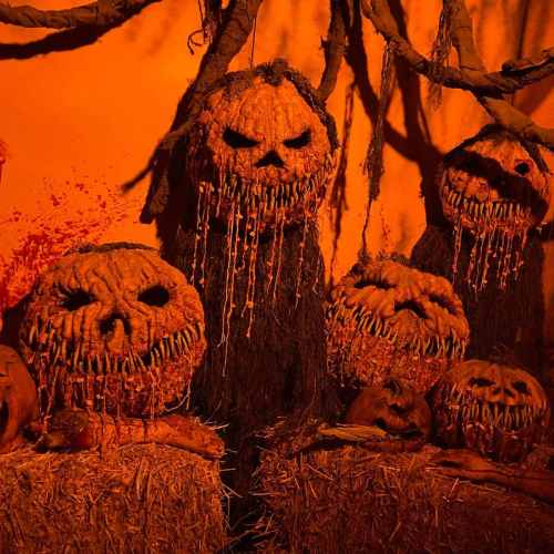 Frostys Forest and Pumpkin Patch - Dark Harvest - Haunted House - Corn Maze - Perdition Home - Fleshyard