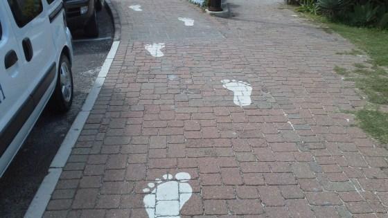The trail of Bigfoot footprints
