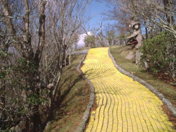 Yellow Brick Road through the Haunted Forest - photos©Copyright 2010 James E. Cary, JECary.com
