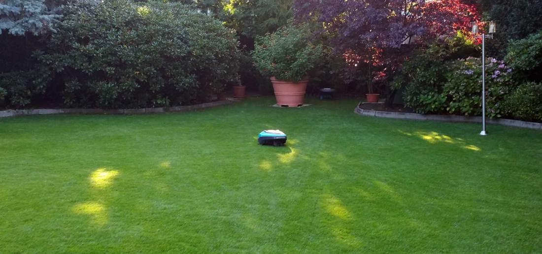 Perfekter Rasen mit dem Mähroboter Installationsservice aus Hamburg