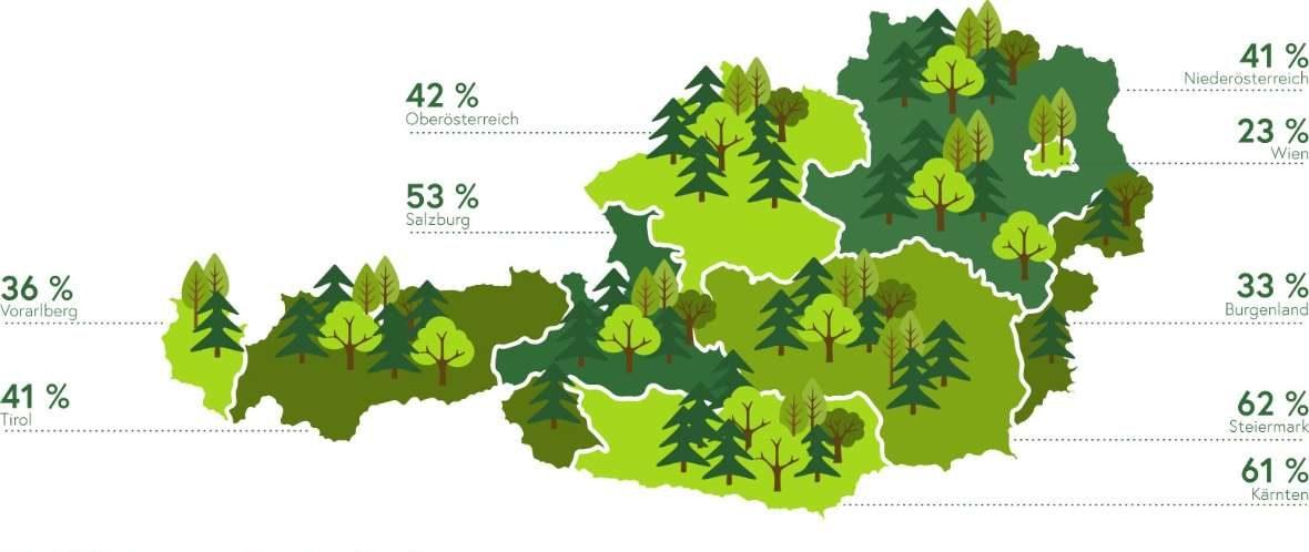 Wald Fläche pro Bundesland