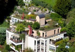 Sichtschutz fr den Balkon  Tolle Ideen  leicht umsetzbar