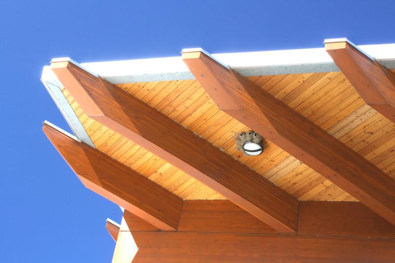Flachdach aus Holz  Vorteile  Preise auf einen Blick