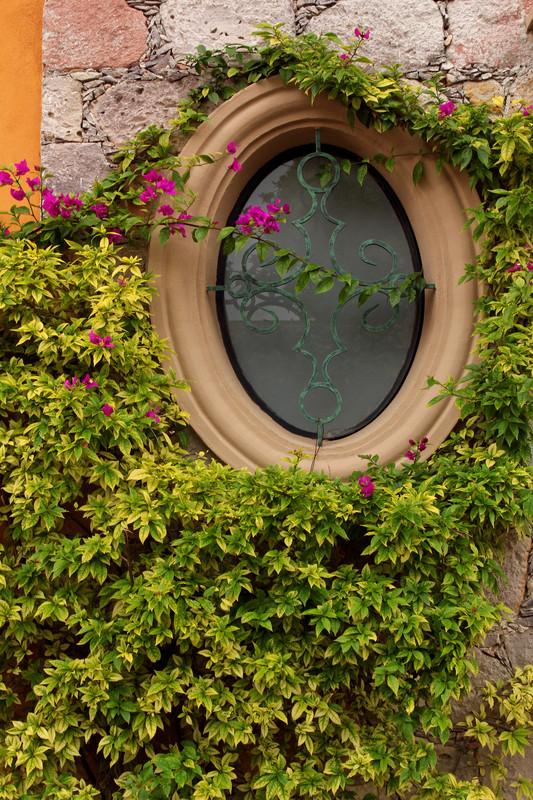 Mauer verschnern  Streichen Verkleiden oder Bepflanzen