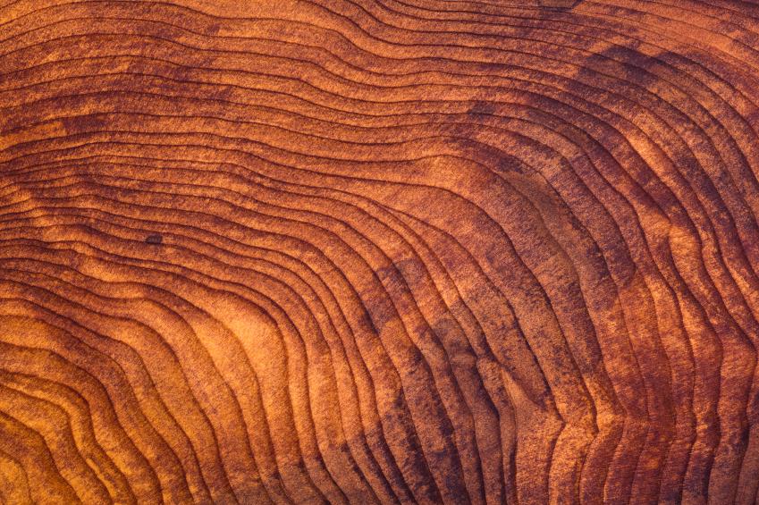 RedwoodHolz  Eigenschaften Verwendung und Preise
