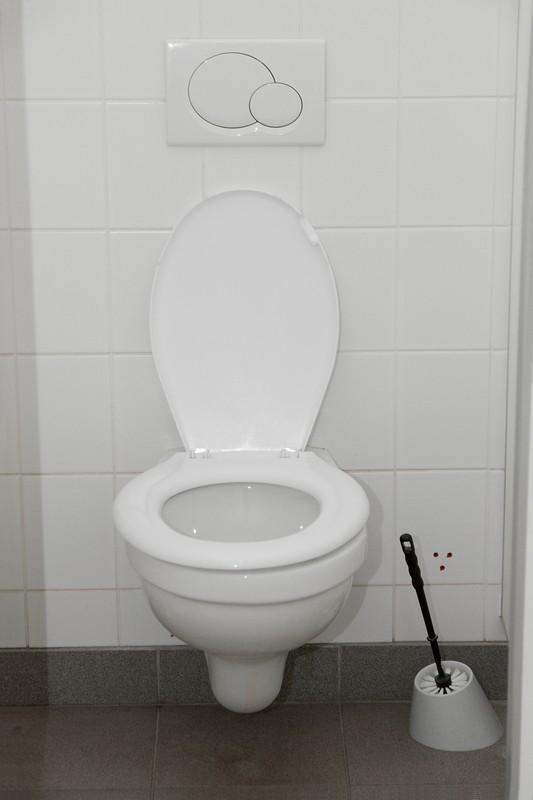 Toilettensplung defekt  Was knnen Sie selber tun
