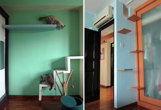 Cat Climbing Shelves For Small Es