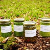 Bärlauch konservieren