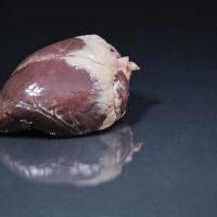Kochen mit Herz (vom Reh)