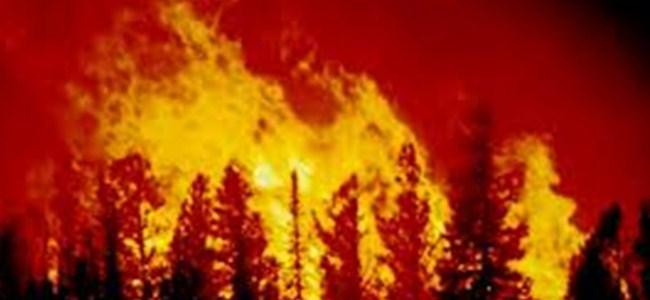 Kırklar'da büyük yangın !