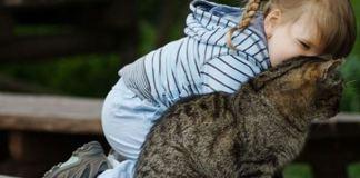 Kedi beslemek şizofren ediyor