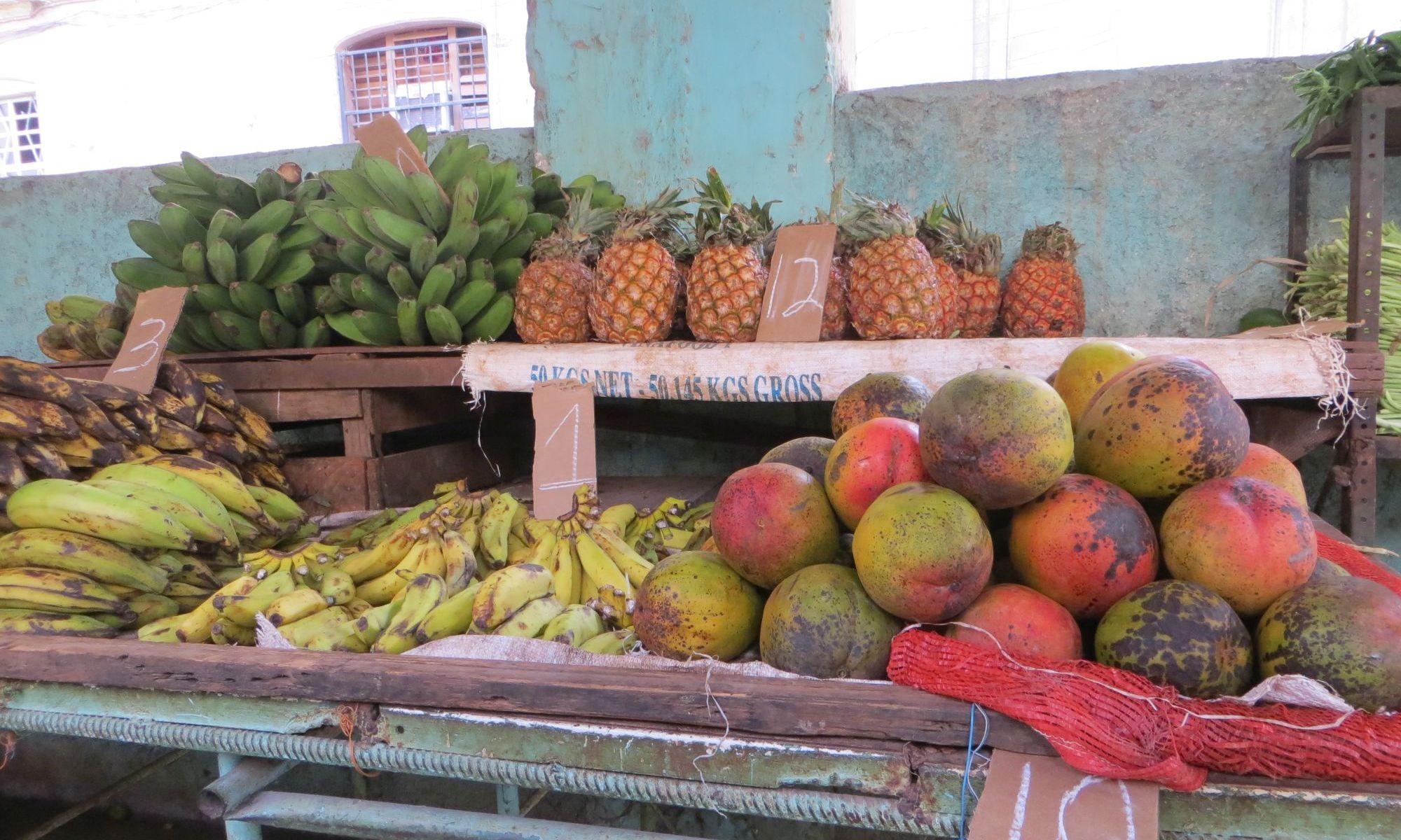 kubanische Mangos
