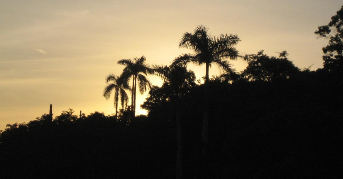 Kuba Reisetipps: Unsere 23 besten Tipps für den Kuba Urlaub