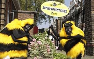 Bee Gas Mask